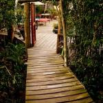 Bamboo Grove - entrance