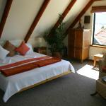 Tree House room