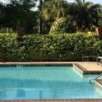Nice, simple pool