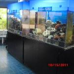 Smithsonian Culebra Marine exhibit located on the back side of the first island on the Amador Ca