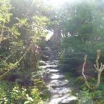 Rock garden at Muckross House
