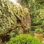 rincon del jardin
