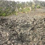 Along Kilauea Iki Trail, the sights are other worldly!