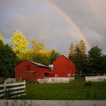Handsome Brook Farm
