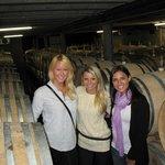Vineyards Honey & Black Sand Tour