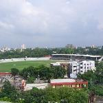 view of the cricket stadium