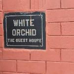 Photo de White Orchid Guesthouse.