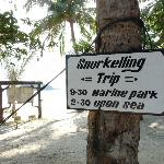 Snorkeling, anyone. Forgive the extra 'L' =)