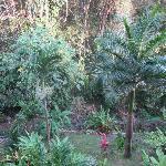 Jardin des propriétaires situé à l'arrière du gîte