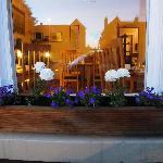 Flower Box on Dining Room Window