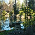 The water in the Japanese Gardens