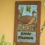 Entrance to our cottage, Great Tinamou