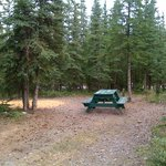 Private wooded tent sites