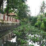 View of the homestay from the canal