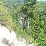 Tumalog falls from a distance