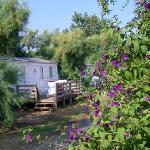 Camping Calagogo Foto