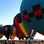 Balloons Over Paradise, Immokalee Florida 2012