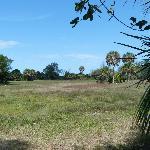 Calusa lands