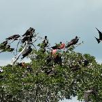 réserve d'oiseaux
