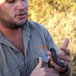 Quinnell, our ranger, with a millipede
