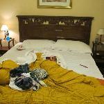 disgusting bed