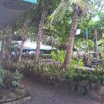 View from Bungalow No.2 to Main Restaurant