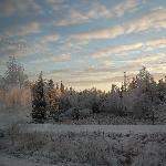 paesaggio di Rovaniemi al tramonto (14.30 )