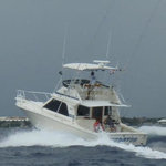 Mike's Marina Fishing Charters SRL