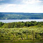 Enjoy our lake view picnic facilities!