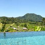 Paysage vu de la piscine arrière