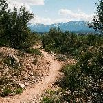 Hiking trail with view of Mingus Mountains