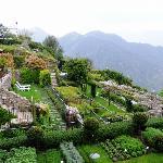The Garden View