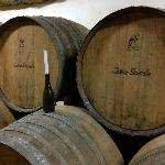 The wine barrels