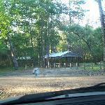 Group picnic area