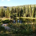 Pond on lower level of Ranch