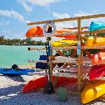 kayak and paddle boards