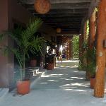 Fenix House of Music-IslaMujeres-México www.fenixisla.com www.facebook.com/fenixlounge #fenixis