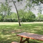 Enjoy a volleyball or horseshoes game. Or just sit in the shade and watch!