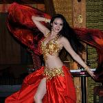Belly Dancer at The Sultan's Tent