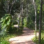 walk way
