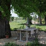 Terrasse à l'ombre du murier platane