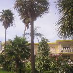 Blich von der Ecke Coronado Drive/ Gulfview Bvd
