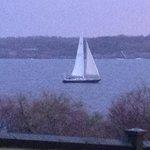 Sailboat on Newport Harbor