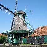 One of 7 windmills that are our view