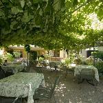........Bel giardino dove gustare la colazione!
