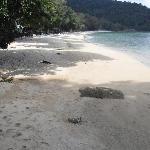 Tri Trang Beach in Patong