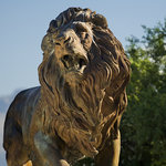 A bronze lion waits to greet you at the Museum