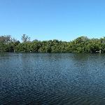 Lagoon area