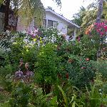 Comedor Maris Garden