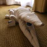 Towel Alligator!